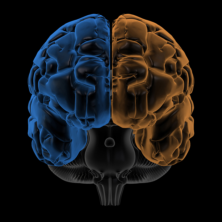 Consciousness, Higher-Order Thoughts, and the Brain