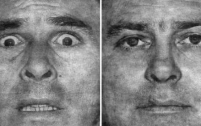 Facial Expressions: How Brains Process Emotion