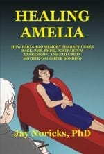 """Healing Amelia"" Front Cover"