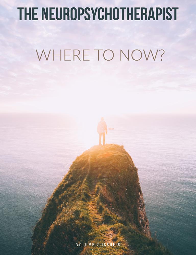 The Neuropsychotherapist Vol 5 Issue 6