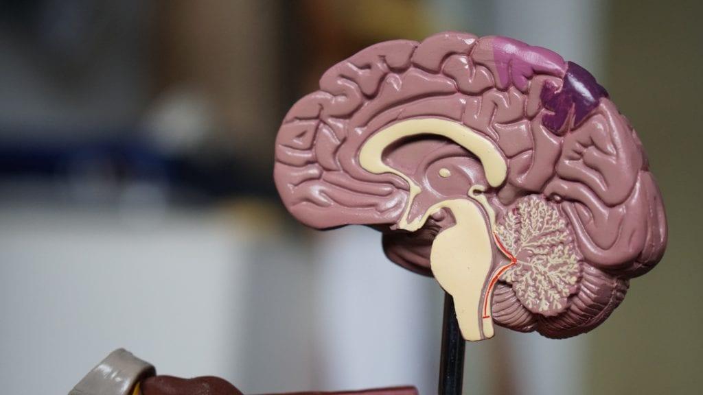 Park Ridge QLD Neurodegenerative Disorder