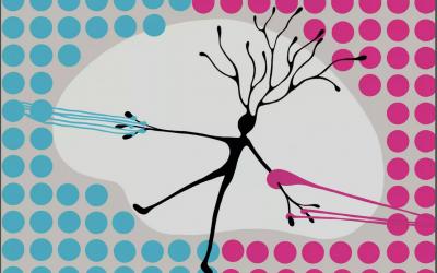Picky neurons